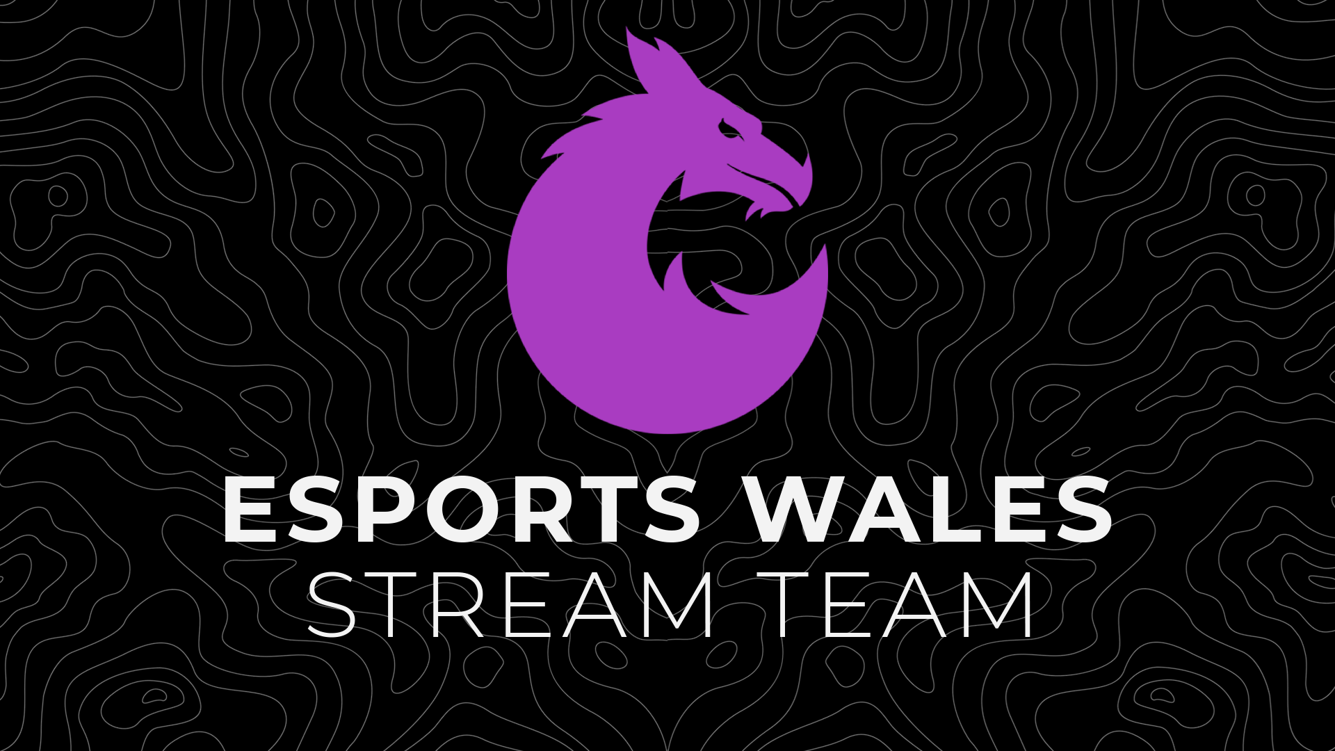 Esports Wales Stream team